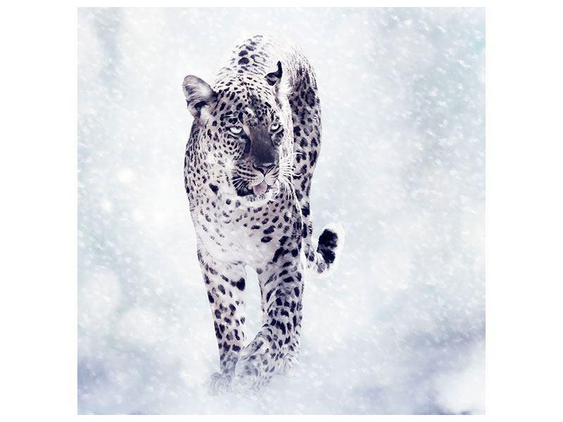 Leinwandbild Der Leopard