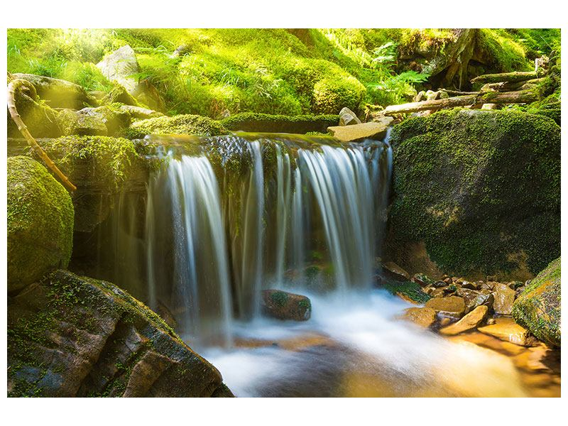 Leinwandbild Schönheit des fallenden Wassers