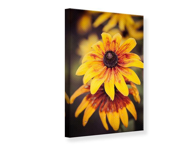 Leinwandbild Fröhliche Blumen