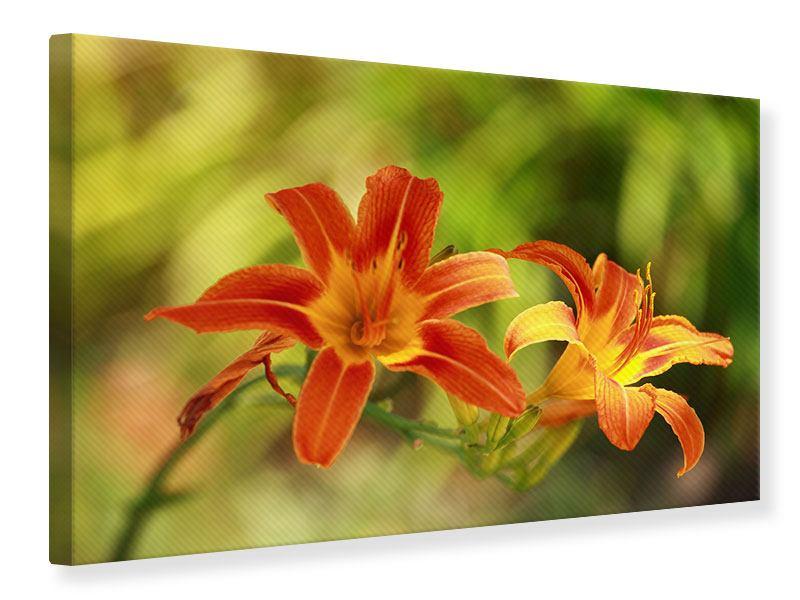 Leinwandbild Natural Lilien