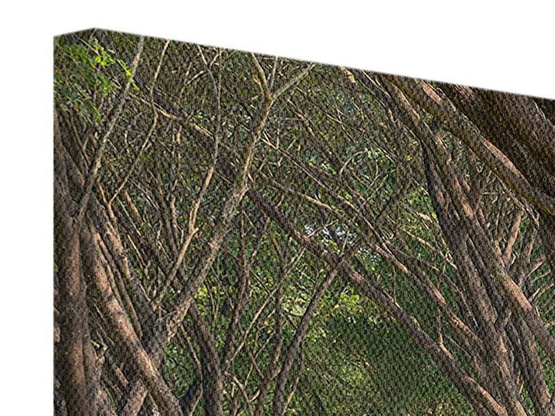 Leinwandbild Im Forstwald