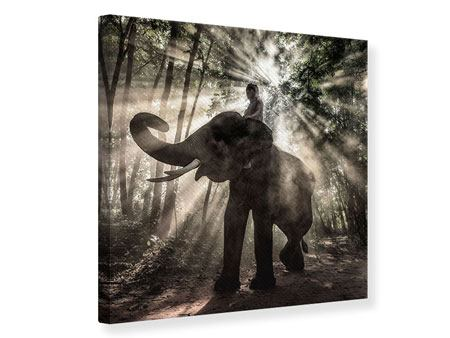 Leinwandbild Der Elefant