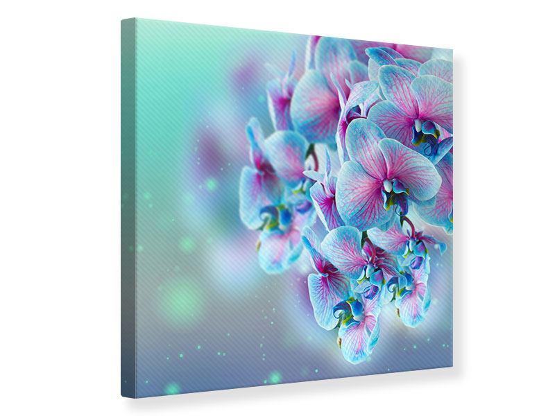 Leinwandbild Farbige Orchideen