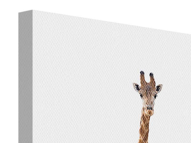 Leinwandbild Die lange Giraffe