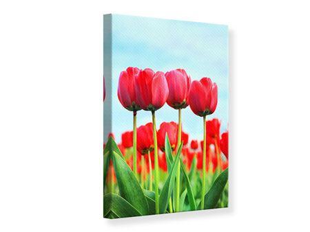 Leinwandbild Rote Tulpen