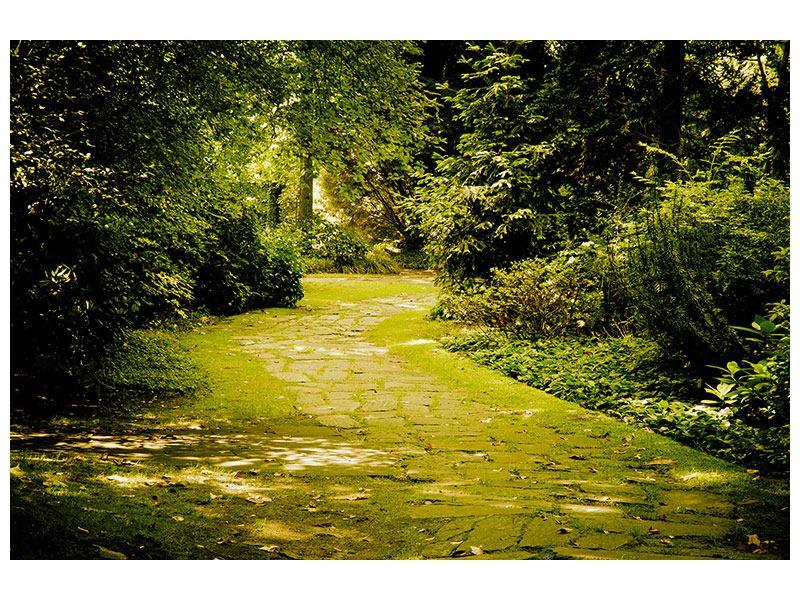 Leinwandbild Der bemooste Weg