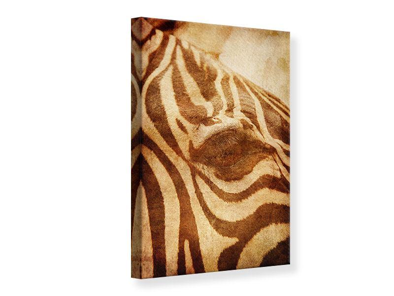 Leinwandbild Zebra Close Up