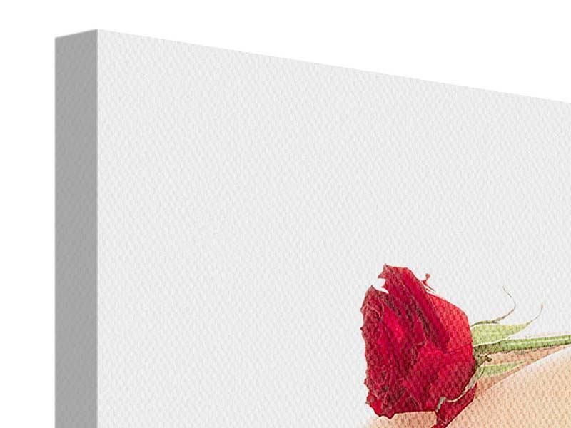 Leinwandbild Verführerische Rose
