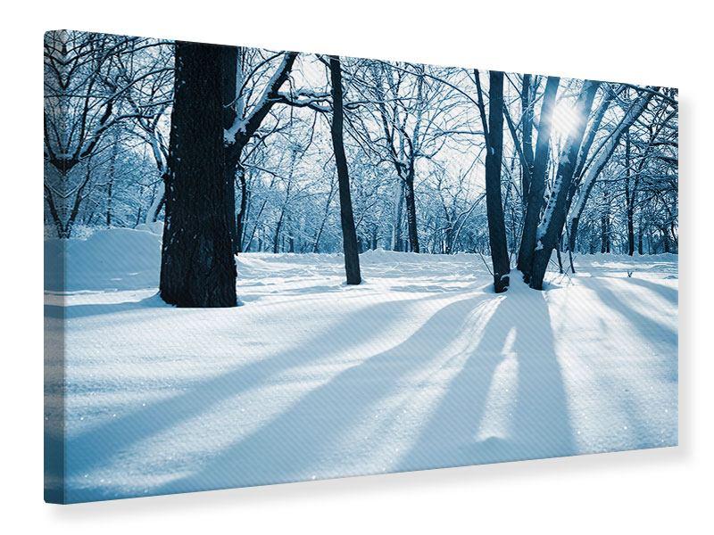 Leinwandbild Der Wald ohne Spuren im Schnee