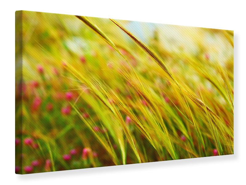 Leinwandbild Das Weizenfeld