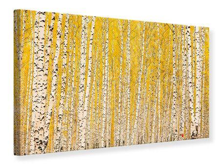 Leinwandbild Der Birkenwald im Herbst