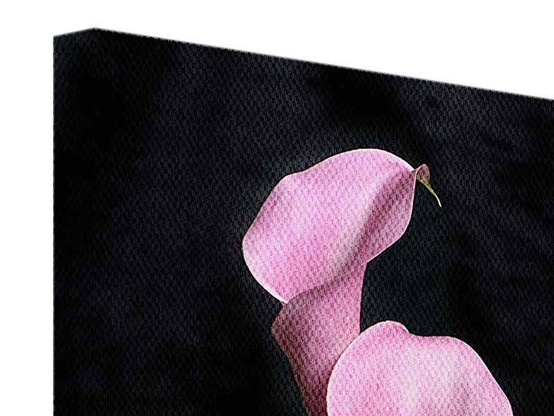 Leinwandbild 3 Lila-Callas