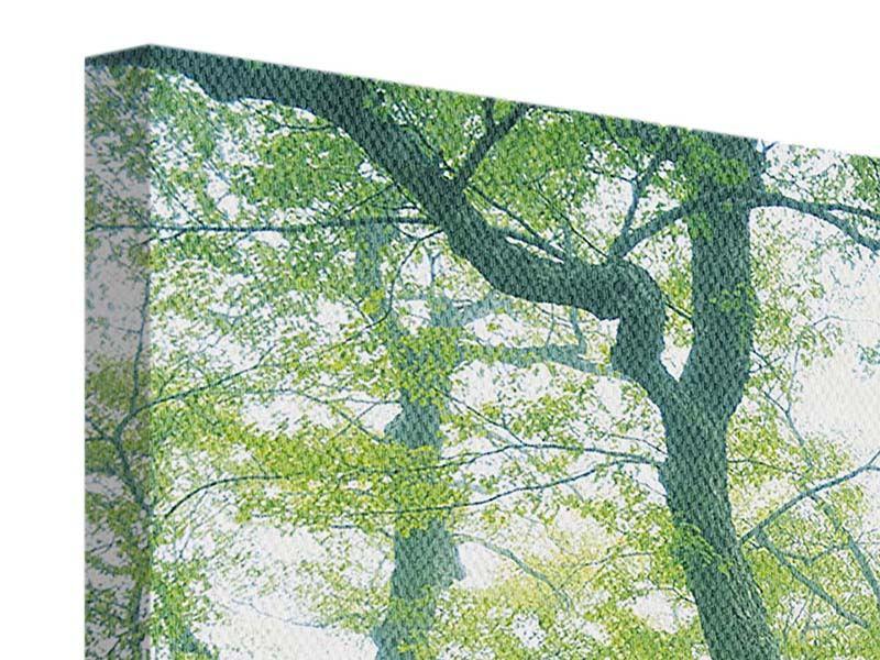Leinwandbild Der alte Baum