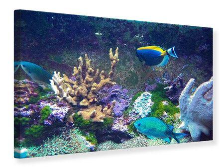 Leinwandbild Fische