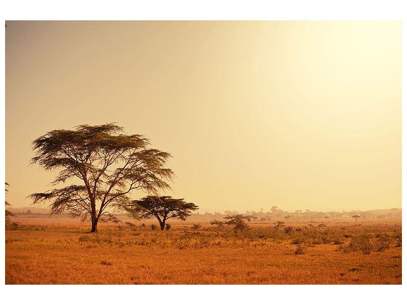 Leinwandbild Weideland in Kenia