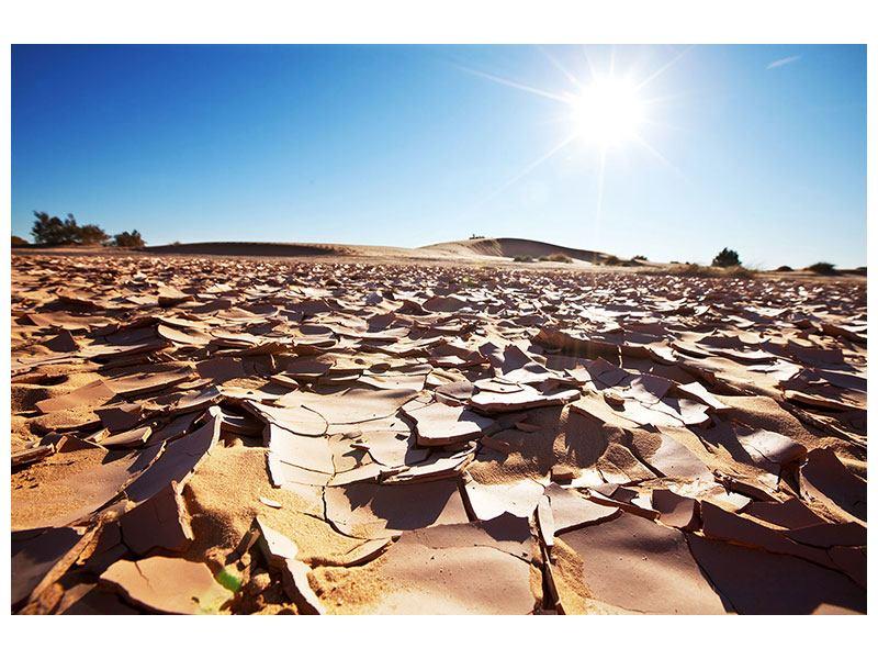 Leinwandbild Dürre