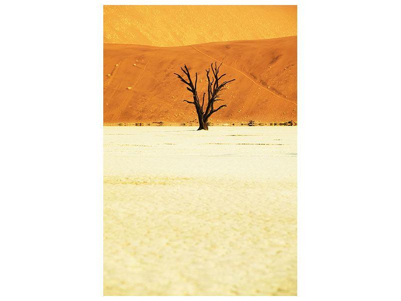 Leinwandbild Der Wüstenbaum