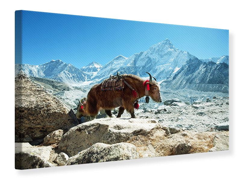 Leinwandbild Das Himalaya-Gebirge