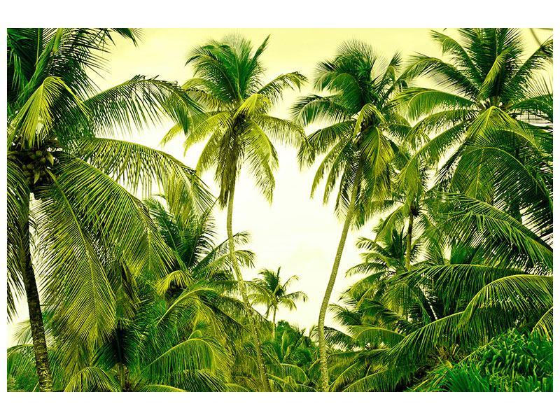 Leinwandbild Reif für die Insel