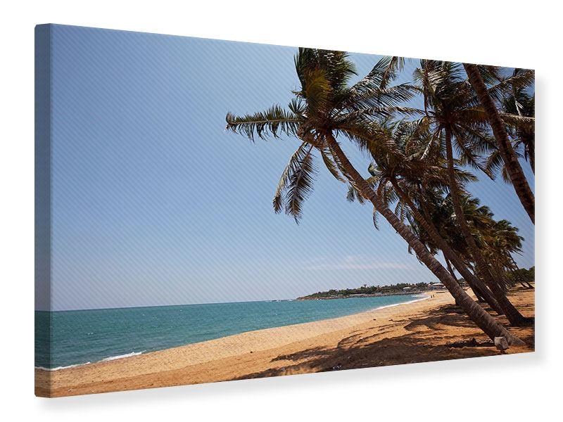 Leinwandbild Palmblätter