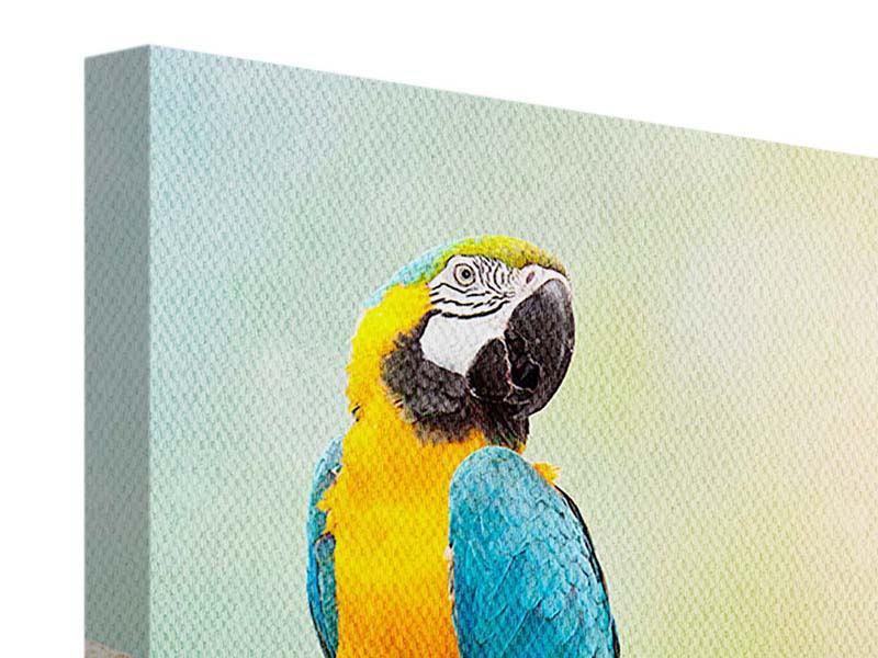 Leinwandbild Der Papagei