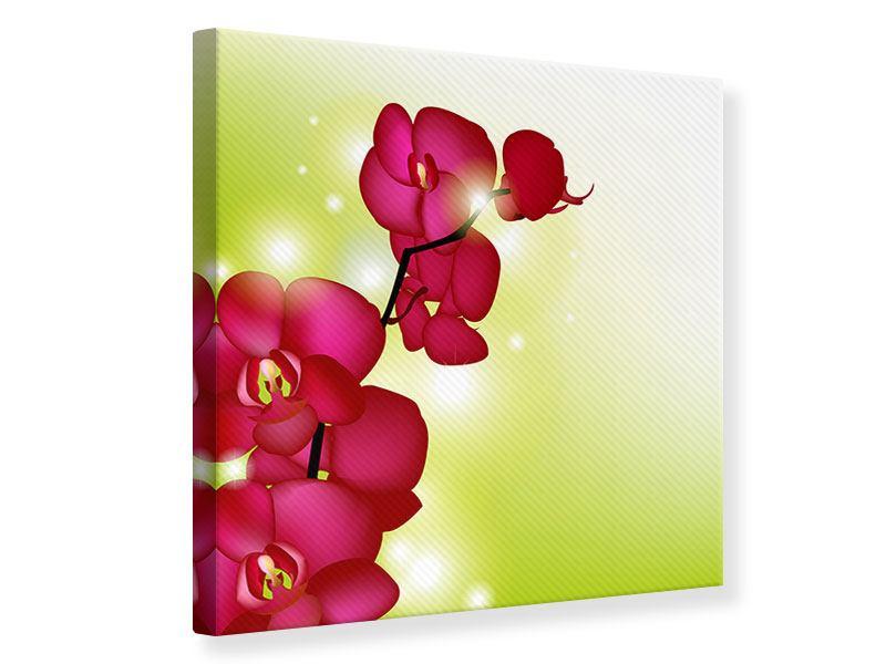 Leinwandbild Heiligtum der Orchidee