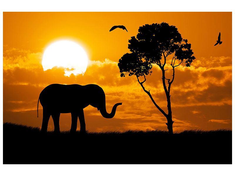 Leinwandbild Verträumtes Afrika