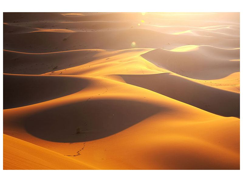 Leinwandbild Wüstenwanderung