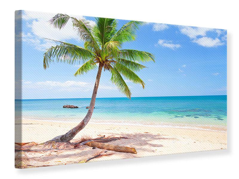 Leinwandbild Die eigene Insel