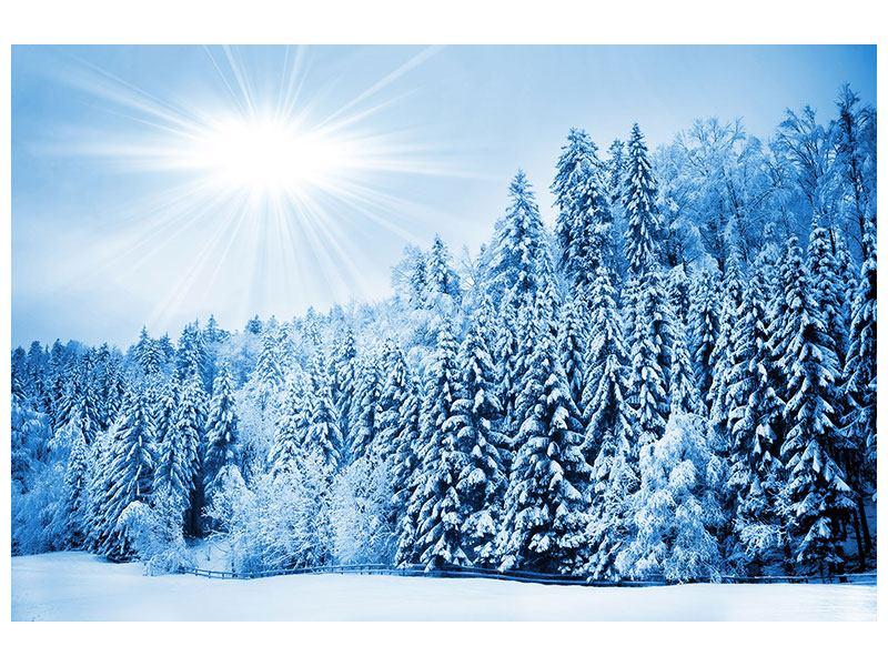 Leinwandbild Wintermärchen