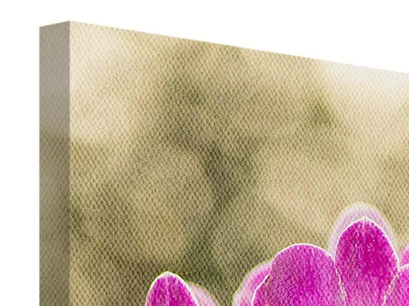 Leinwandbild Orchideen Violett