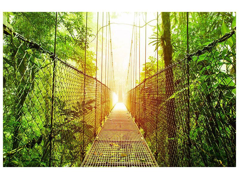 Leinwandbild Hängebrücke