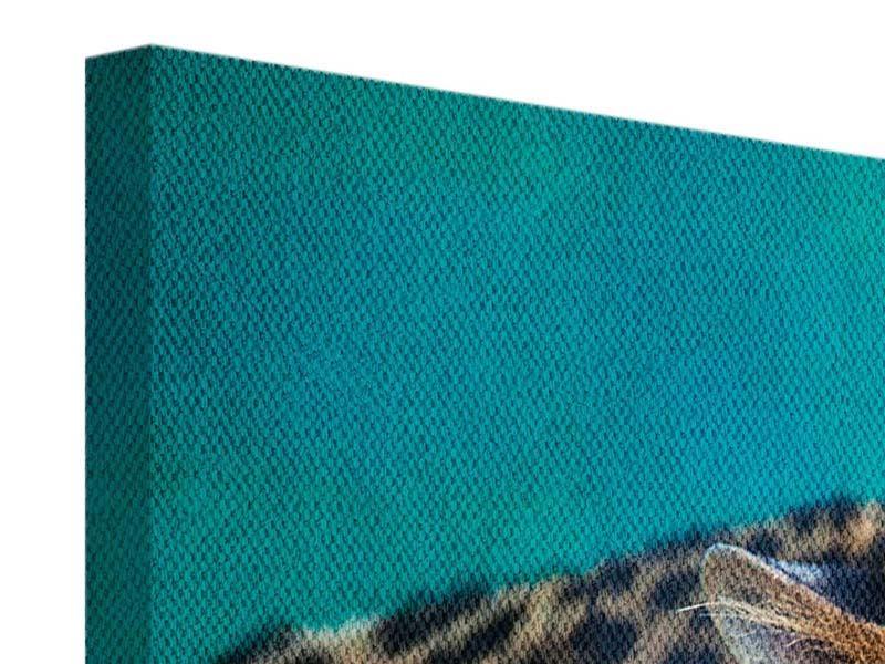 Leinwandbild Achtung Leopard