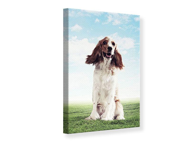 Leinwandbild Funny Dog
