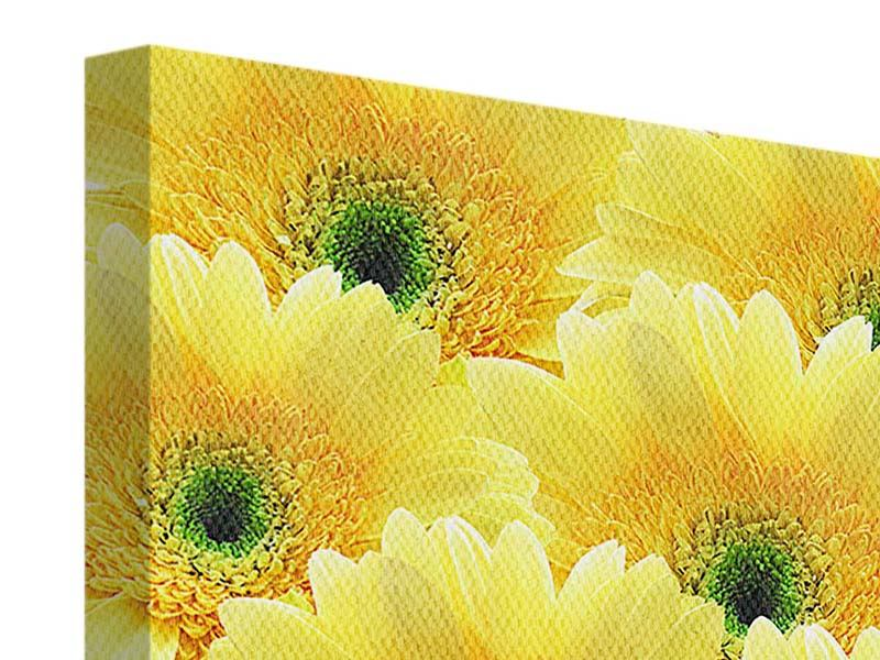 Leinwandbild Flower Power Blumen