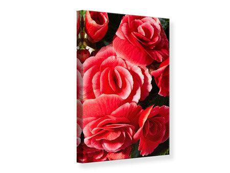 Leinwandbild Rote Rosen