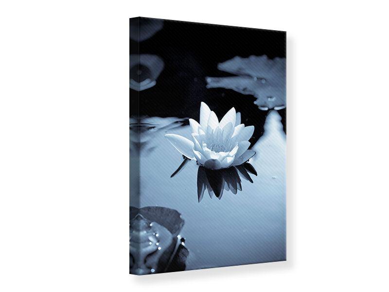 Leinwandbild Schwarzweissfotografie der Seerose
