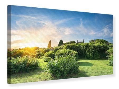 Leinwandbild Sonnenaufgang im Park