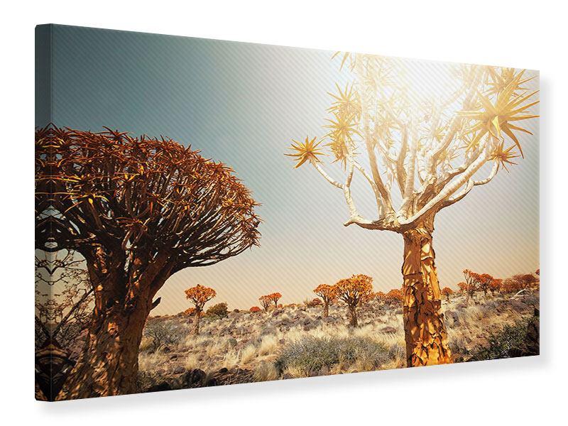 Leinwandbild Afrikanische Landschaft