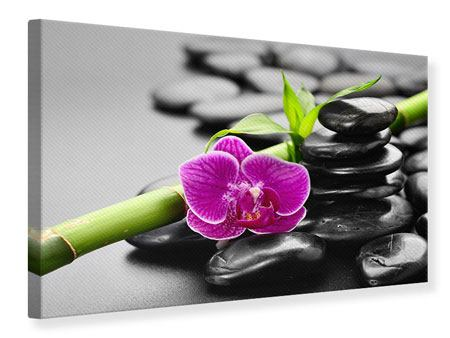 Leinwandbild Feng-Shui-Orchidee