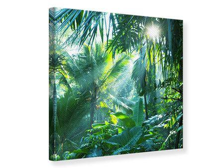 Leinwandbild Im Tropenwald