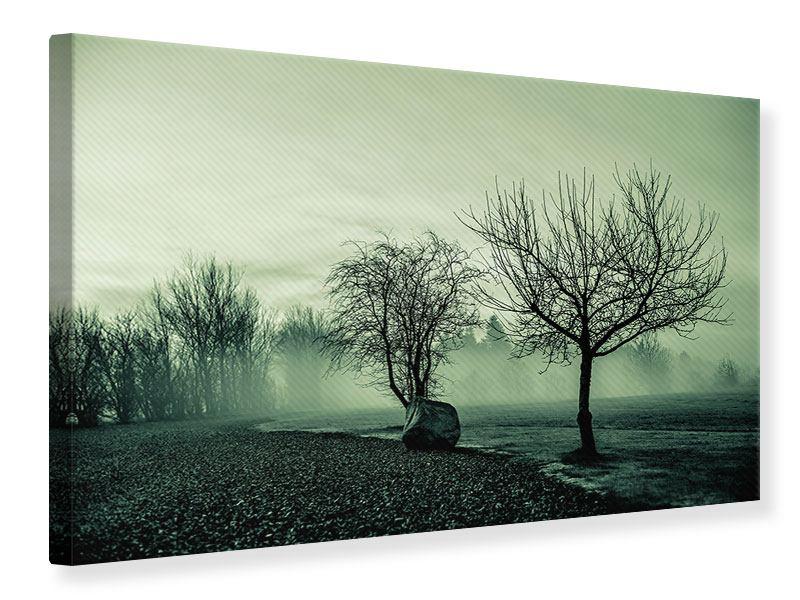 Leinwandbild Der Auwald im Nebel