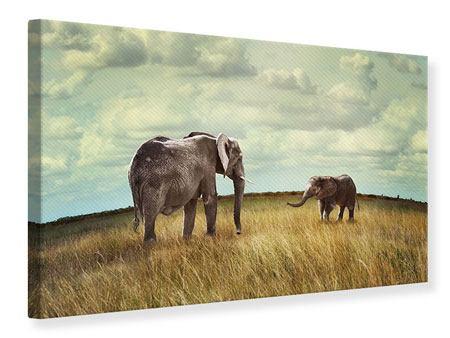 Leinwandbild Elefanten und Feng Shui