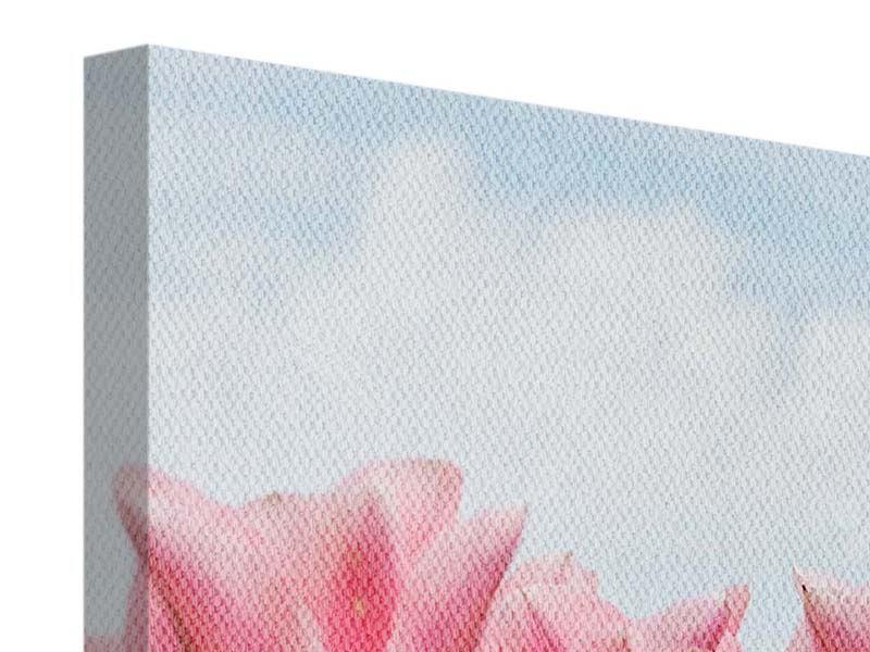 Leinwandbild Zarte Tulpen