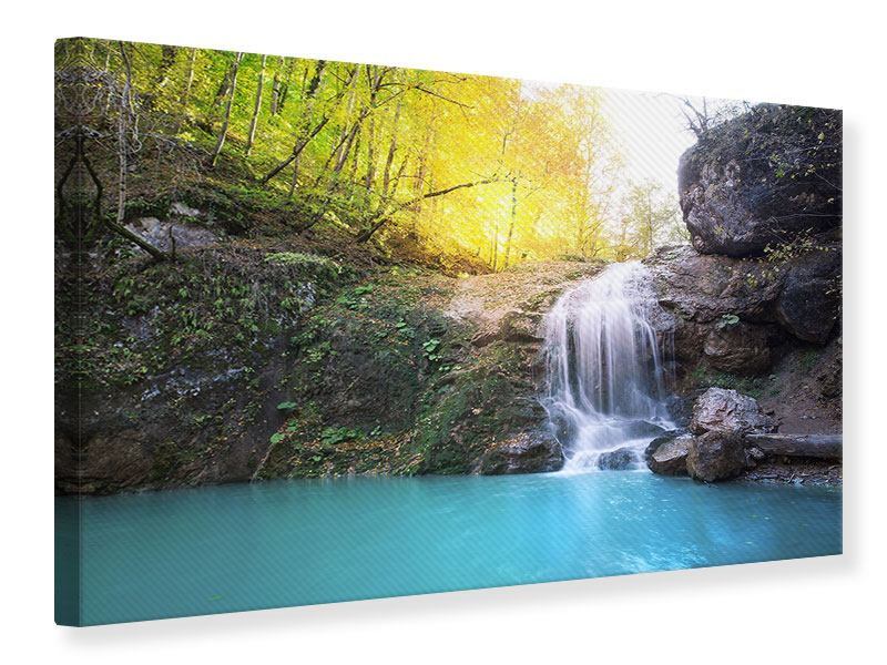 Canvas Print Flowing Waterfall