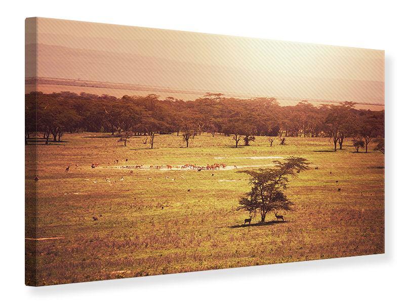 Leinwandbild Malerisches Afrika