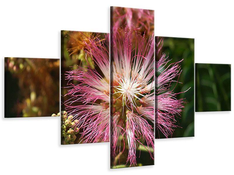 Leinwandbild 5-teilig Die Regenbaumblüte