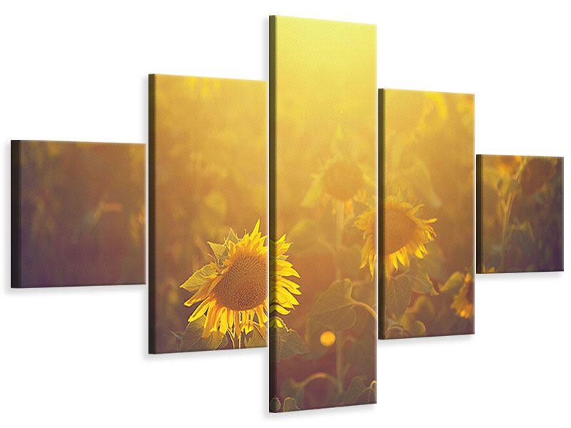 Leinwandbild 5-teilig Sonnenblumen im goldenen Licht