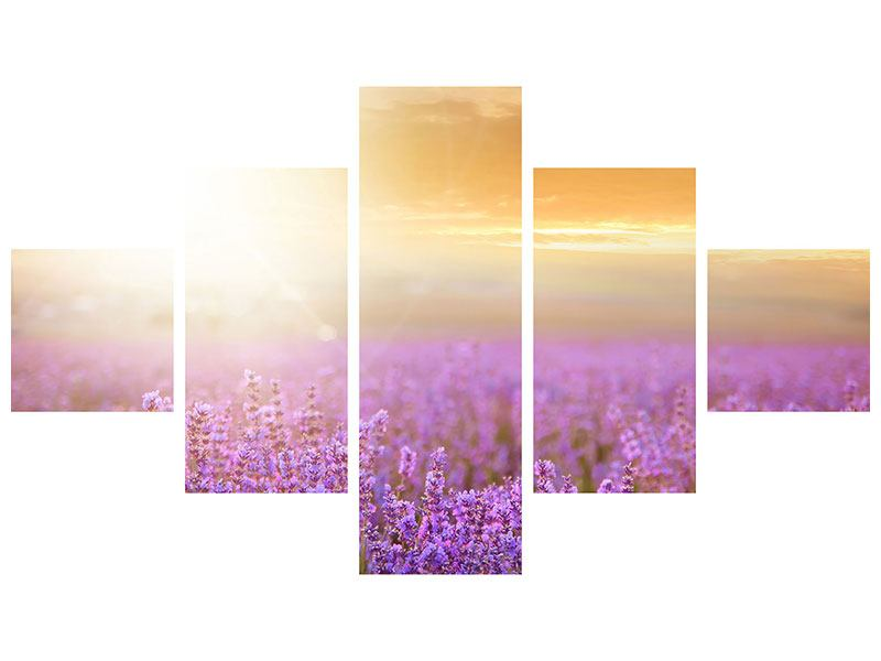 Leinwandbild 5-teilig Sonnenuntergang beim Lavendelfeld