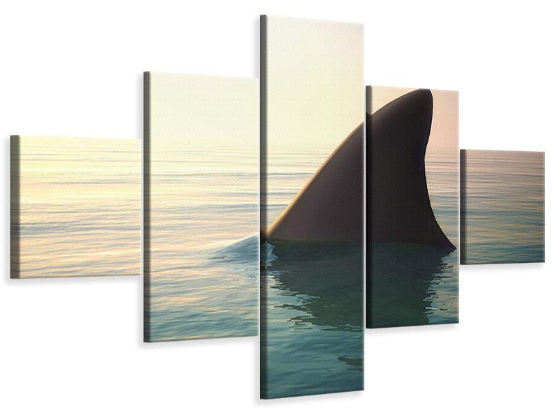 Leinwandbild 5-teilig Haifischflosse